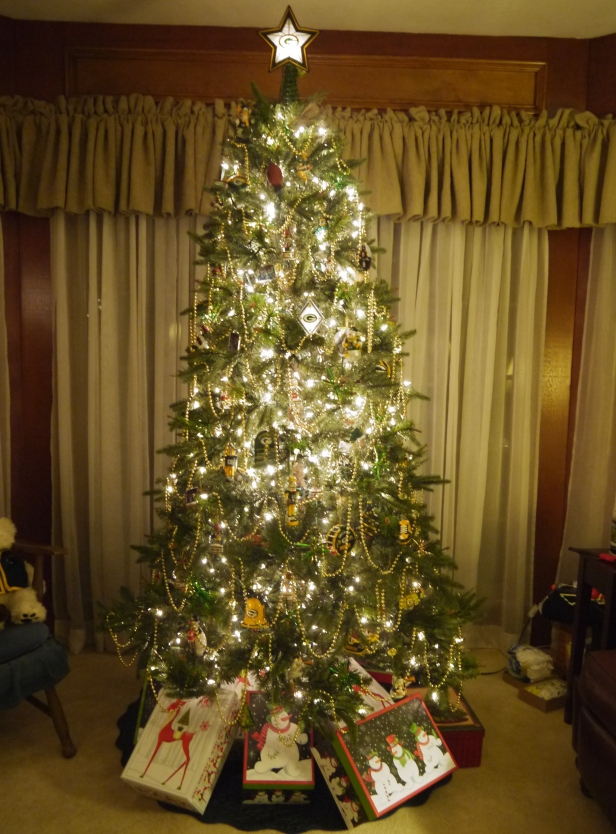 Packer Tree 2014 (3)