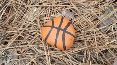 Painted Basketball Rock